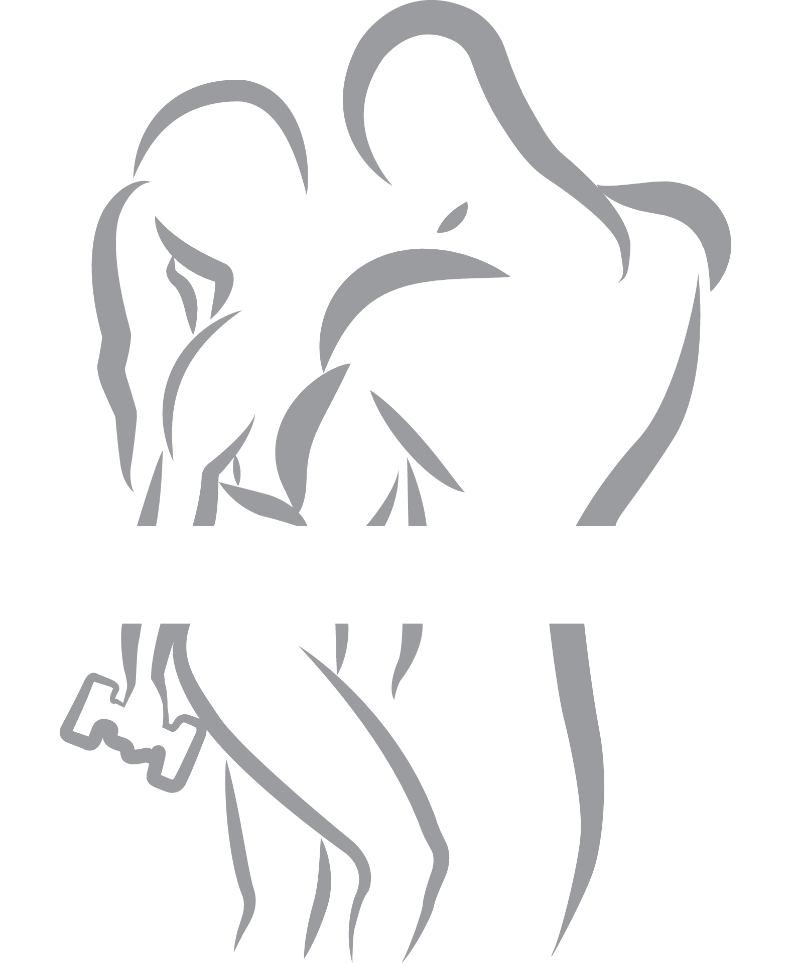All for Sport